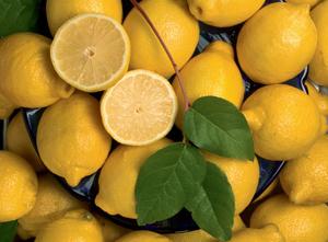 Lemons of Sorrento